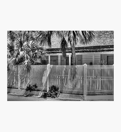 Under the Tropical Sun in Nassau, The Bahamas Photographic Print