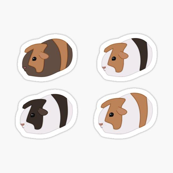 Guinea Pig Pack Sticker