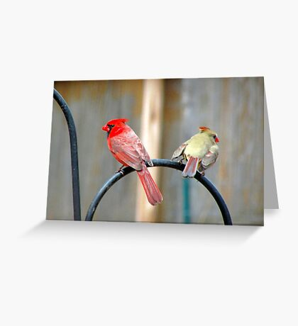 Mister and Missus Greeting Card