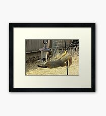 Tricky Dick Framed Print