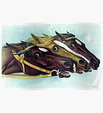 Racing Horse Heads Poster