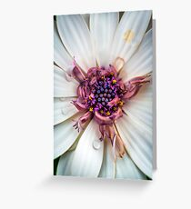 Waking up with a big smile and huge bedhead Greeting Card