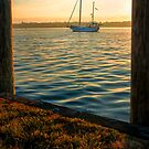 Morning Light on Sailboat on Chesapeake by KellyHeaton