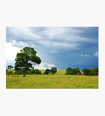 Maasai Mara National Reserve - Kenya Photographic Print