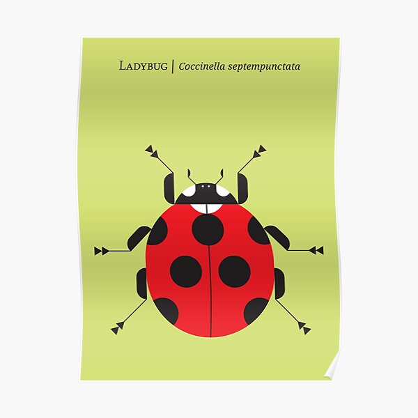 Nature: Ladybug Yellow Poster