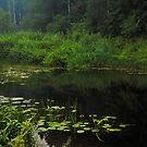 Black Pond by JennyRainbow