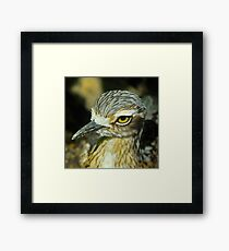 Bush Thick Knee Profile Framed Print