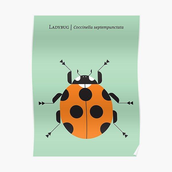 Nature: Ladybug Green Poster