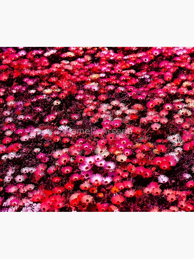 Spring Garden Field of Blooms Floral Print by xpressio