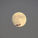 Man and the Moon by debraroffo