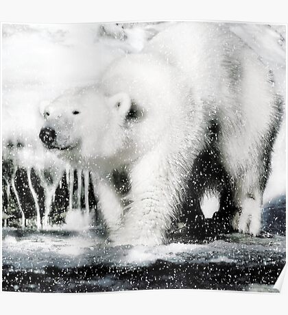 Polar pleasures Poster