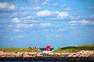 East Shore by John Schneider