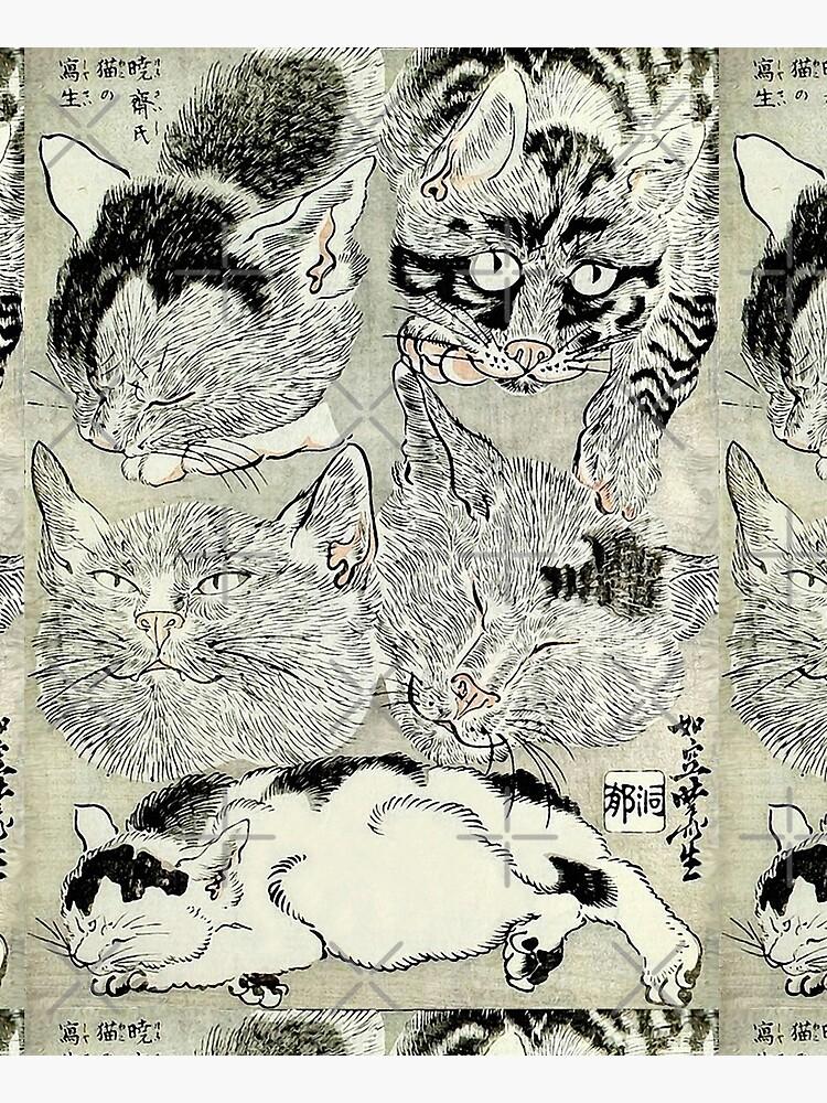 BLACK WHTE JAPANESE CATS  Study by BulganLumini
