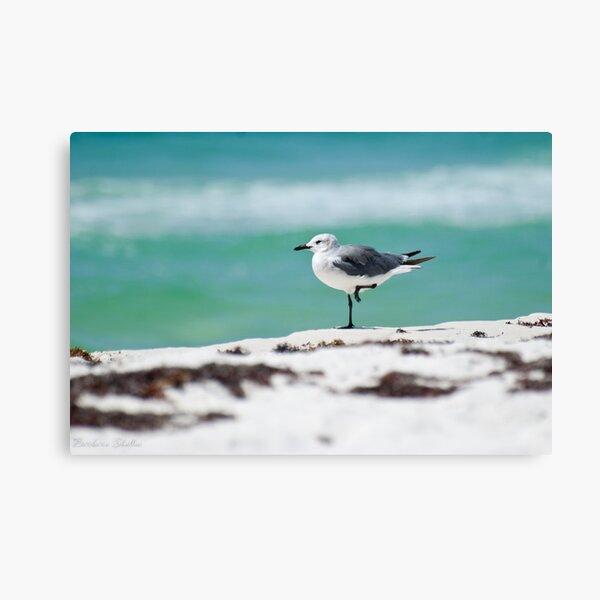 Beach Yoga - Third Pose Canvas Print