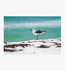 Beach Yoga - Third Pose Photographic Print