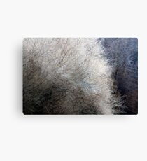 This Can't Be Spring Canvas Print