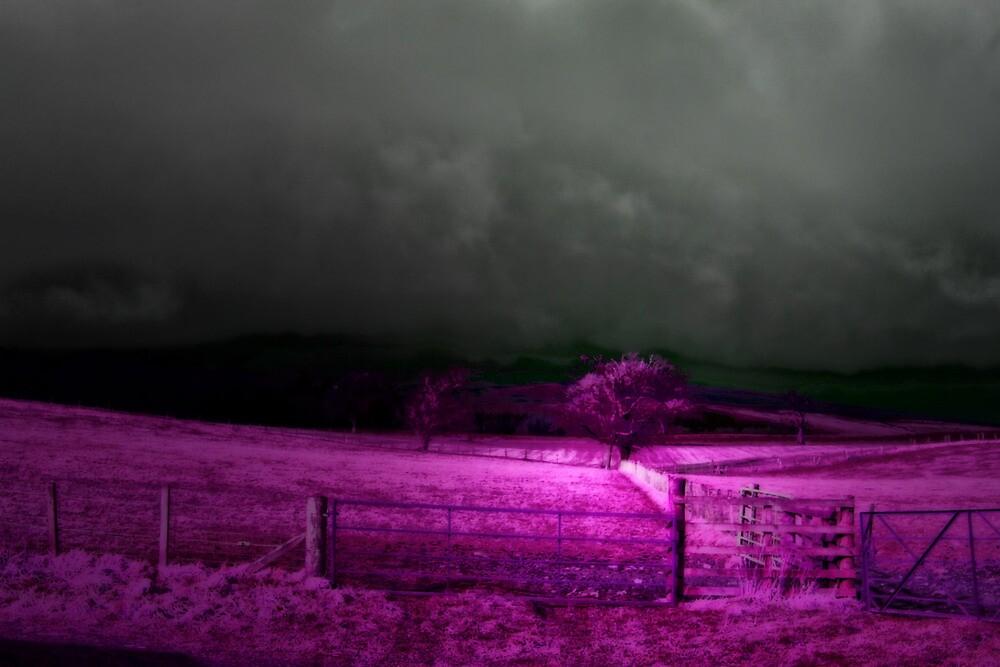 PURPLE RAIN by leonie7