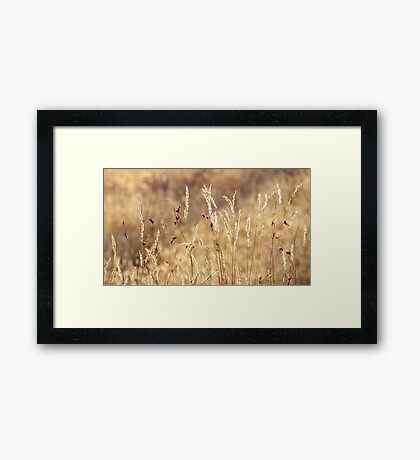 dancing in grass skirts Framed Print