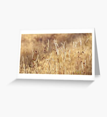 dancing in grass skirts Greeting Card
