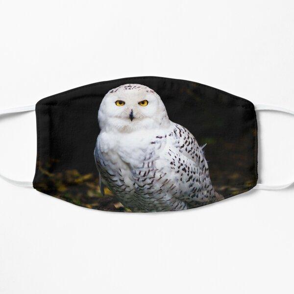 Majestic winter snowy owl Mask