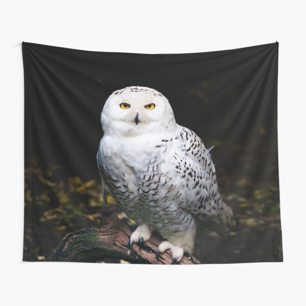 Majestic winter snowy owl Tapestry