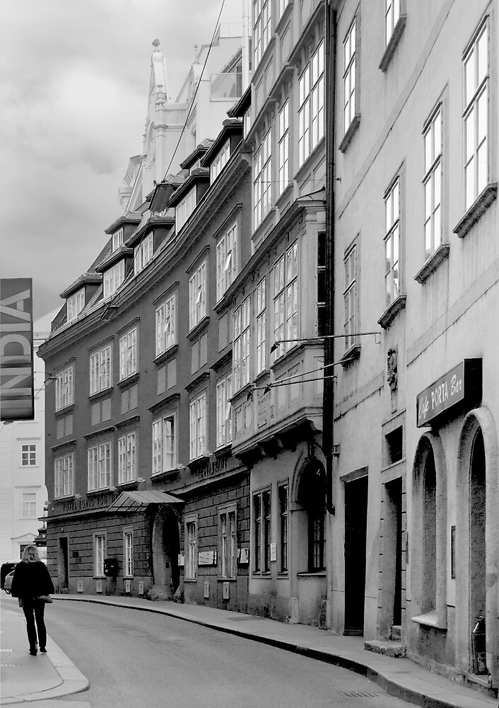 Street view in Vienna by jasminewang