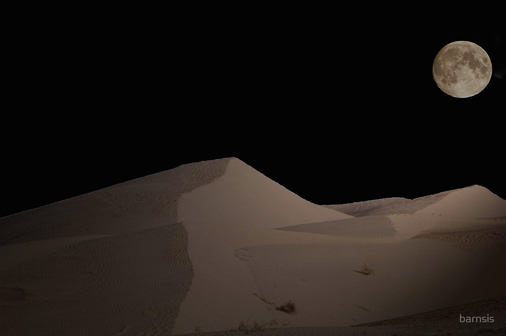 Moon Light on the Sand Dunes by barnsis