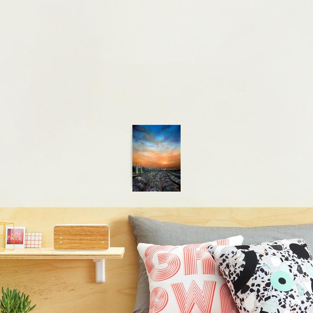 Lavender Field Sunset Photographic Print
