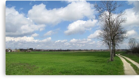 White Clouds In April  by branko stanic