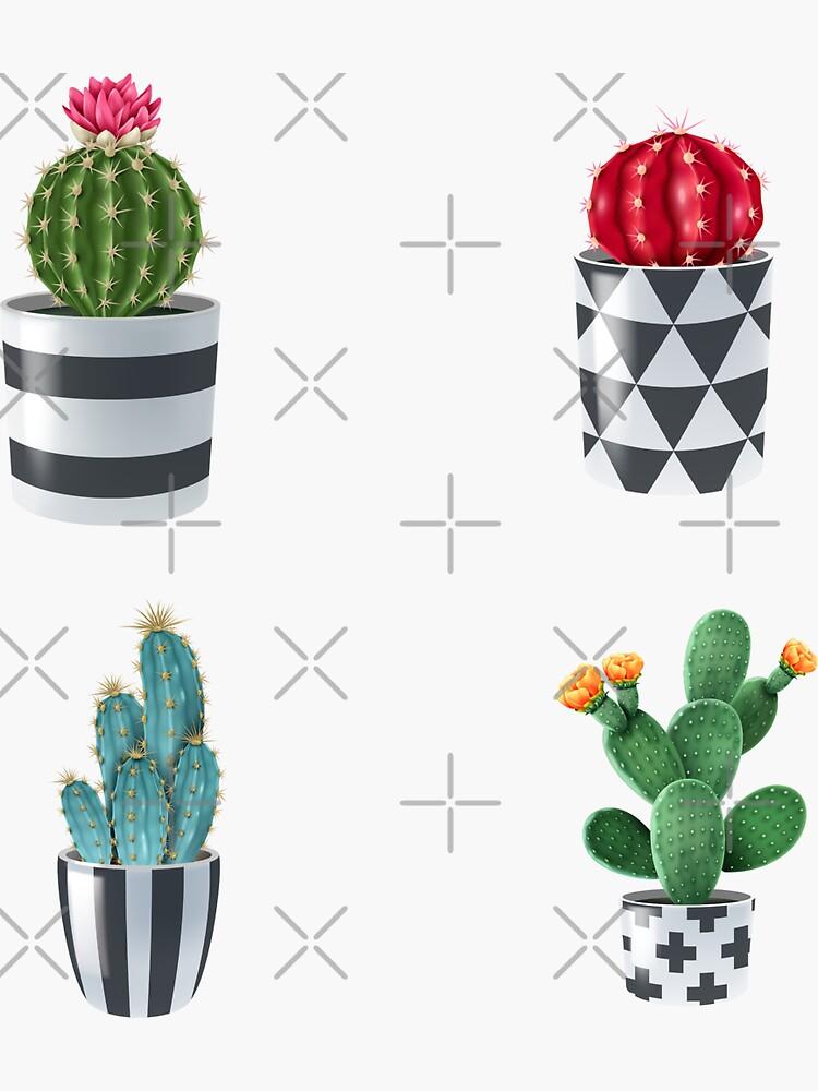 Cactus Variety Garden Pack  by mr-var
