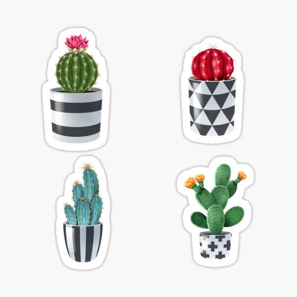 Cactus Variety Garden Pack  Sticker