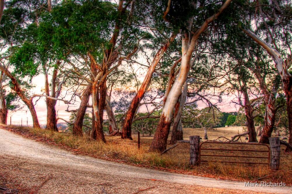 Woodside, Adelaide Hills SA  by Mark Richards