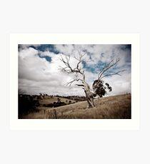 Greendale Australia Art Print