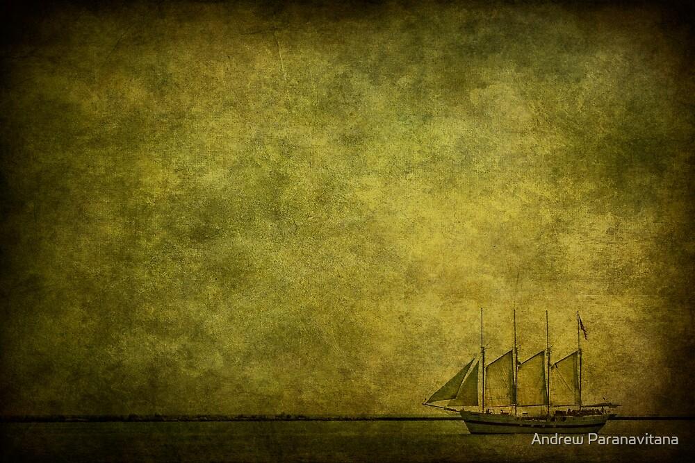 Journey Home by Andrew Paranavitana