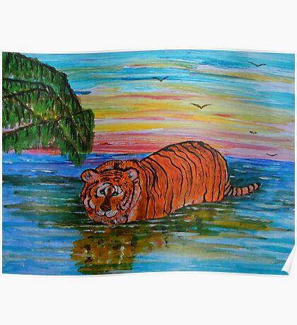 Tiger bathing at sunset Poster