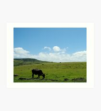 The Eastern Cape Art Print