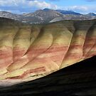 Painted Hills 8 by Bob Christopher