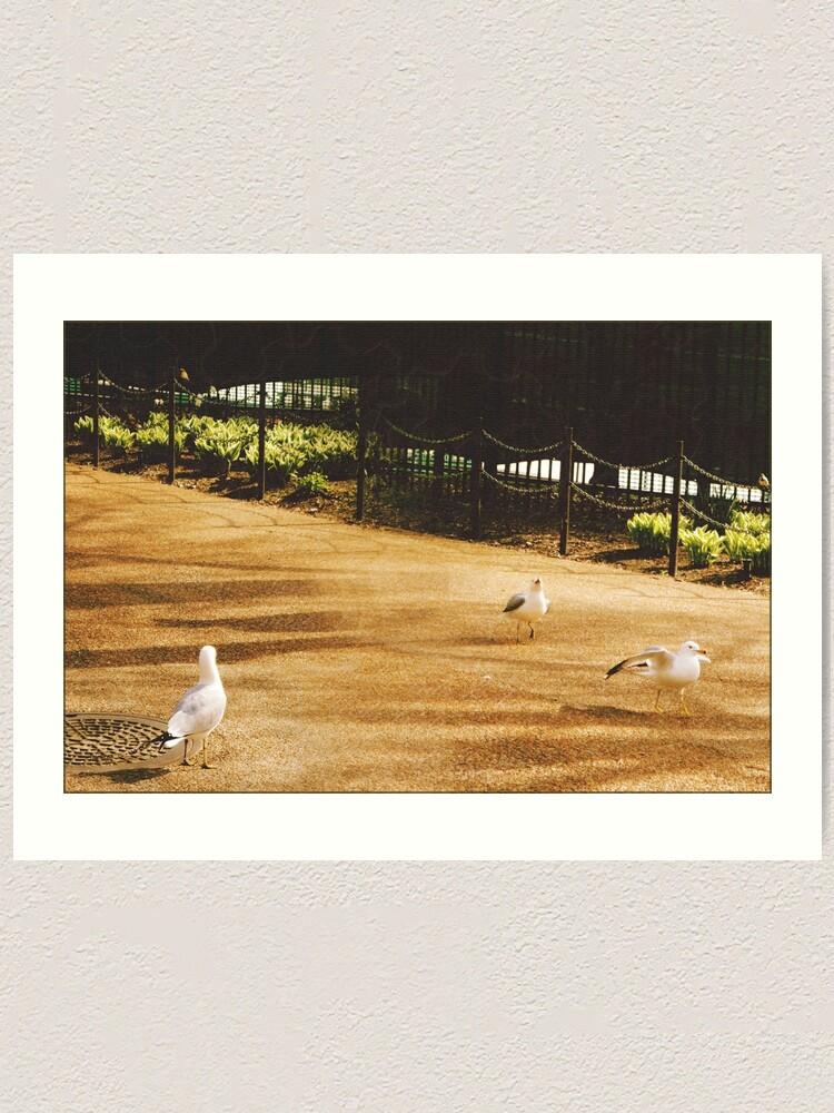 Alternate view of A Flock of Seagulls  Art Print