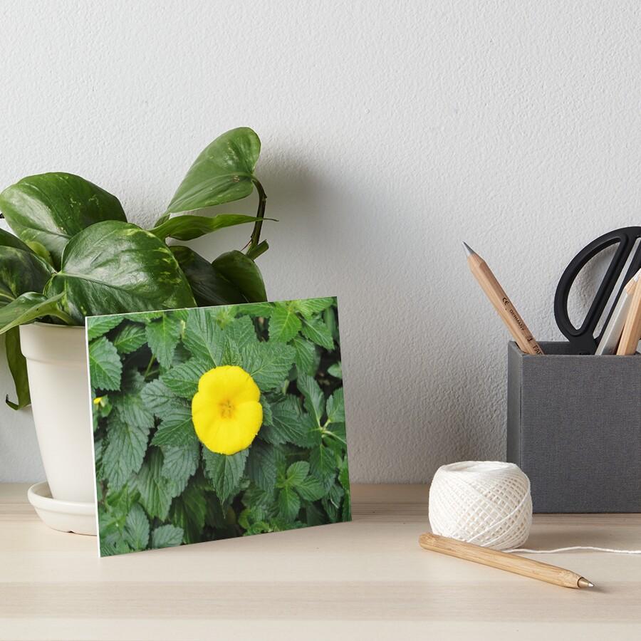 Yellow Art Board Print