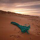 Net by PaulBradley