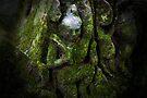 Green Man, Cambodia by Michael Treloar