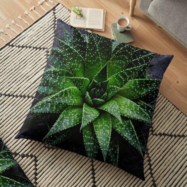 Succulent. Haworthia fasciata Floor Pillow