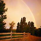 The Promise, Hagley, Tasmania by Alister A Mackinnon