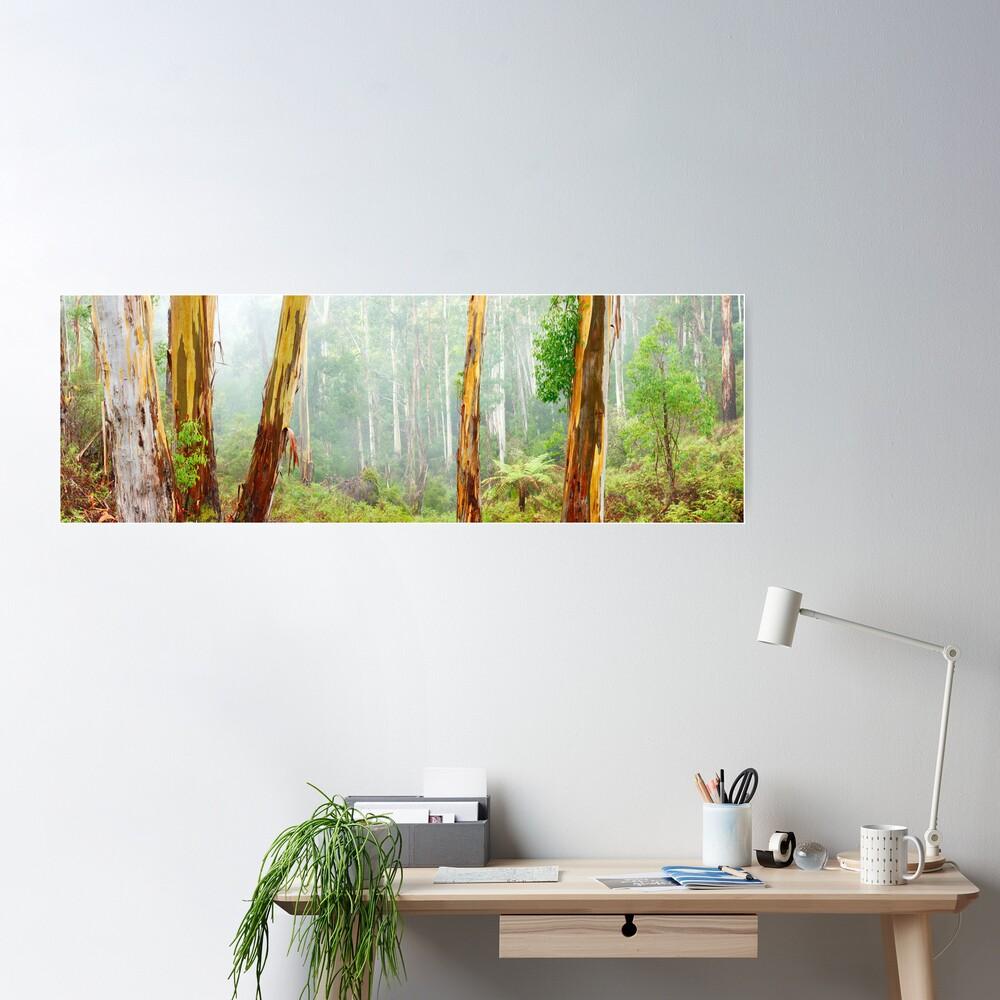 Foggy Forest, Otways National Park, Victoria, Australia Poster