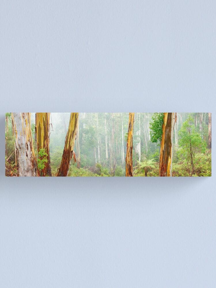 Alternate view of Foggy Forest, Otways National Park, Victoria, Australia Canvas Print