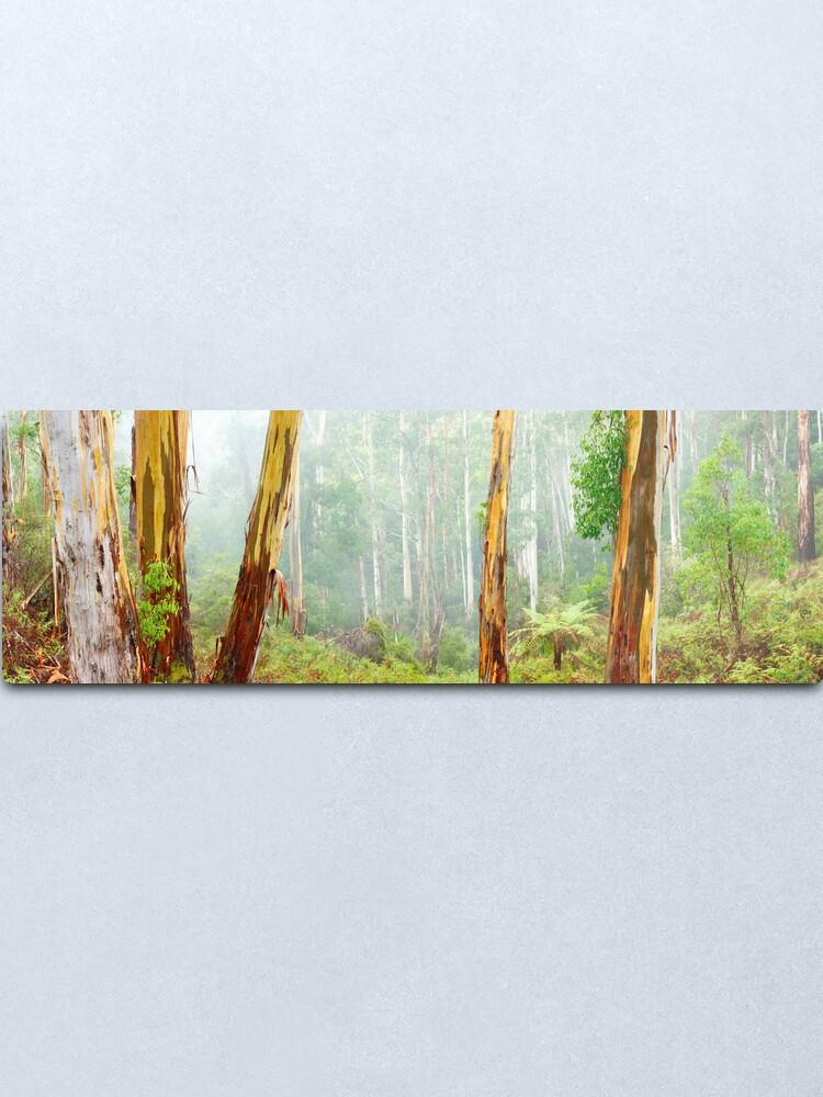 Alternate view of Foggy Forest, Otways National Park, Victoria, Australia Metal Print