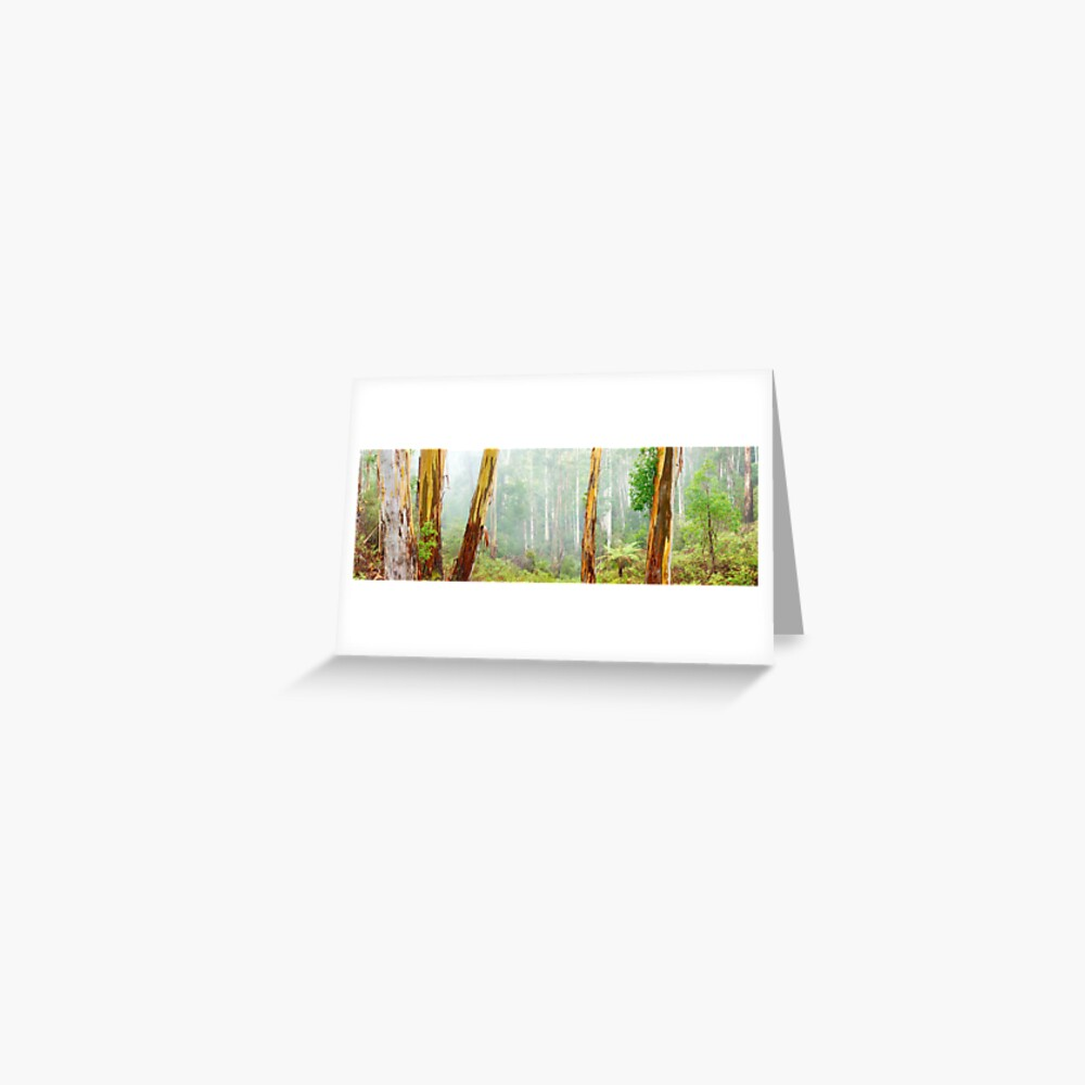 Foggy Forest, Otways National Park, Victoria, Australia Greeting Card