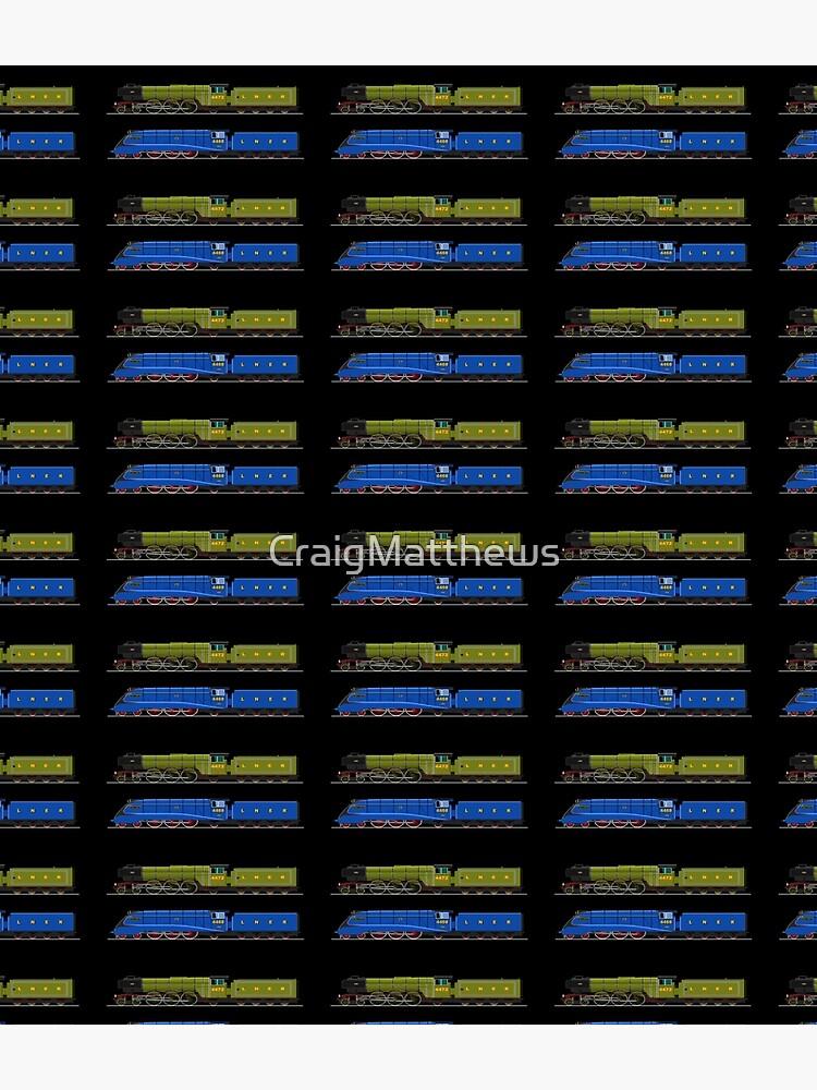 Flying Scotsman and the Mallard by CraigMatthews