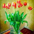 Spring Tulips by Anne  McGinn