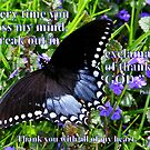 Thank you! #1 by Paula Tohline  Calhoun